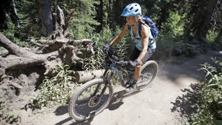 Mountain Bikes in Wilderness