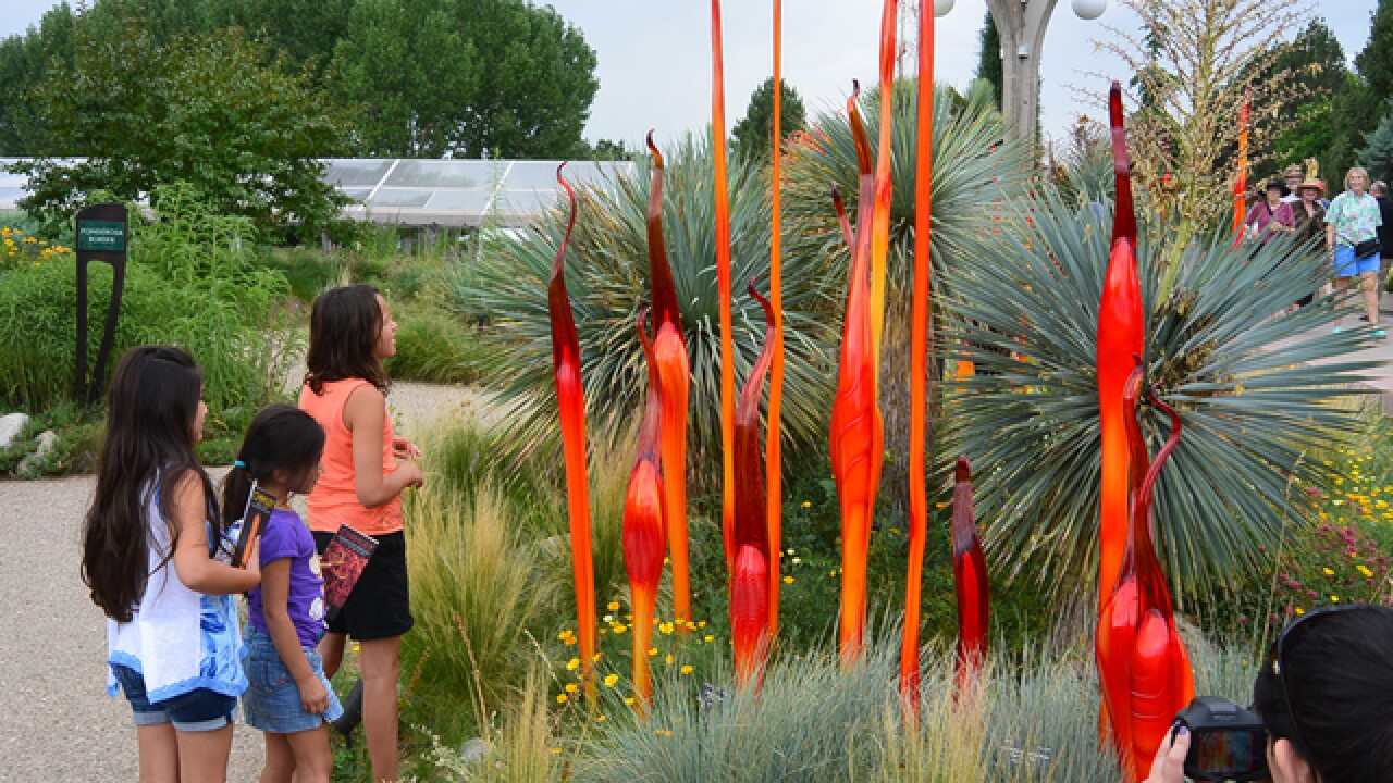 Auditor calls on Denver Botanic Gardens to improve safety, security