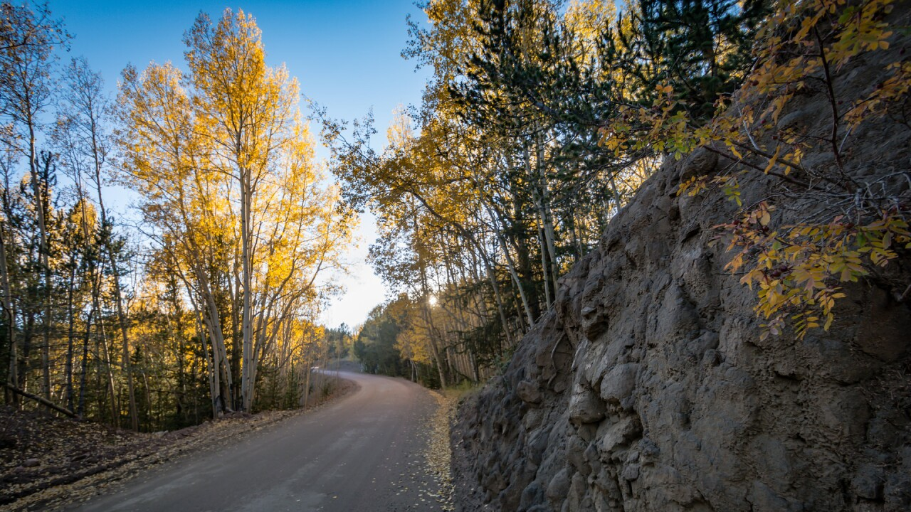 Gold Camp Road