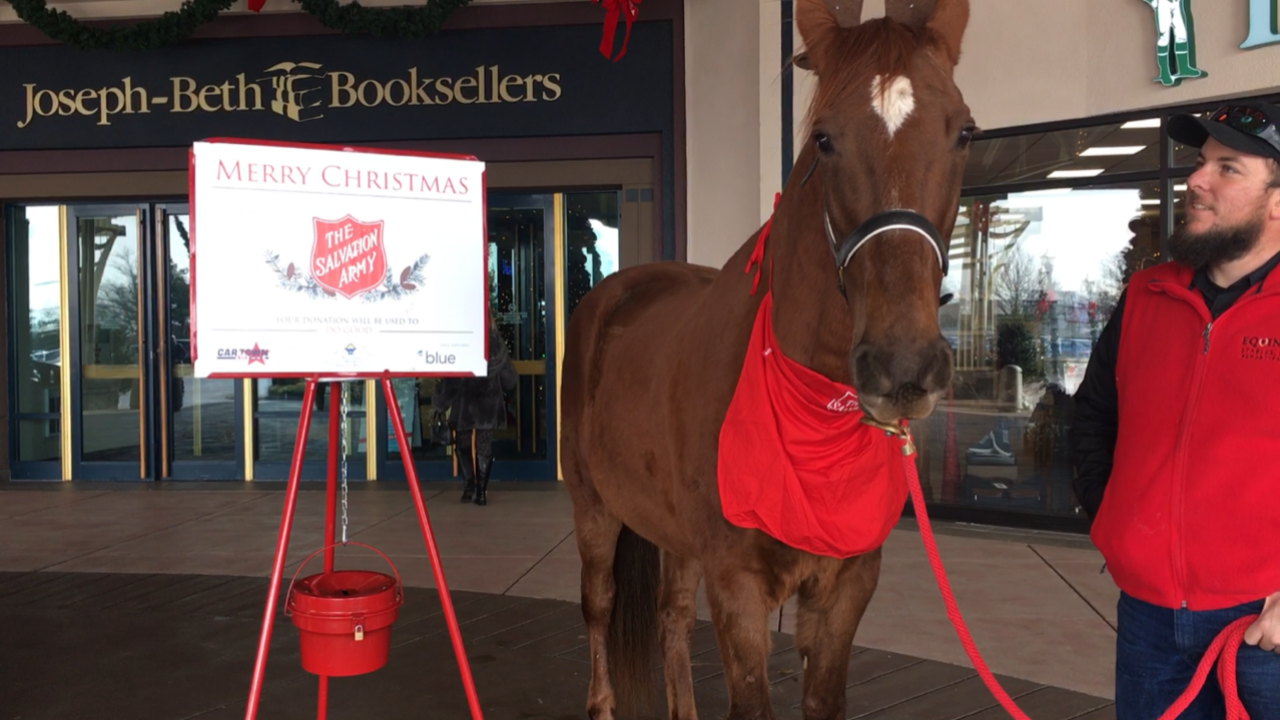 Hank The Bell Ringing Horse Will Ring Bell For Salvation Army