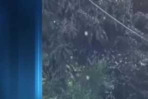 Ice pellets likely fell in South Florida