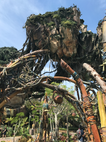Photos: Inside look at Disney World's new 'Pandora: The World of Avatar'