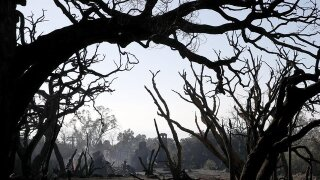 Hundreds warned of fire restrictions in Arizona forest