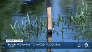 wptv-lantana-sea-pines-flooding.jpg