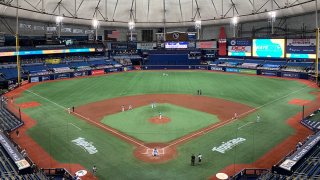 tampa-bay-rays-generic-tropicana-field-000.png