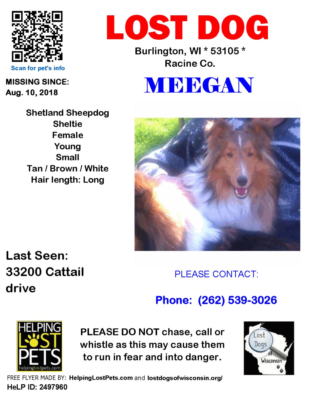 081018 Meegan Shetland Young.png