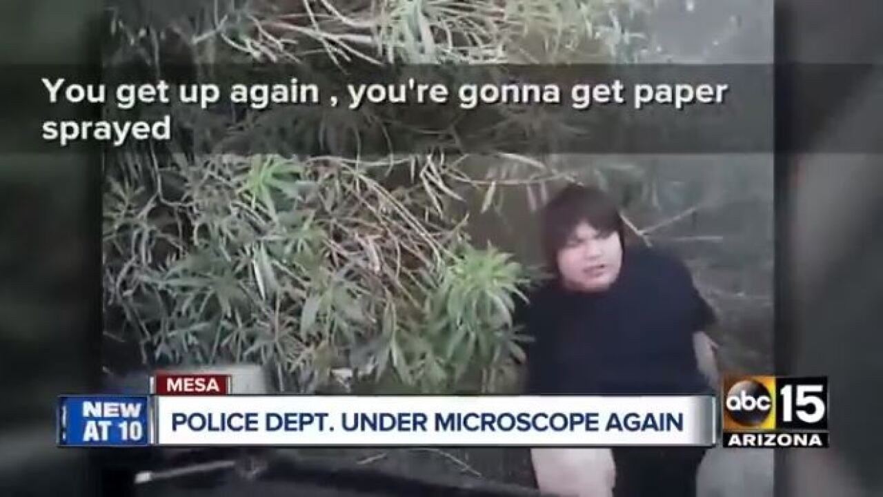 Mesa PD december hicks incident.JPG