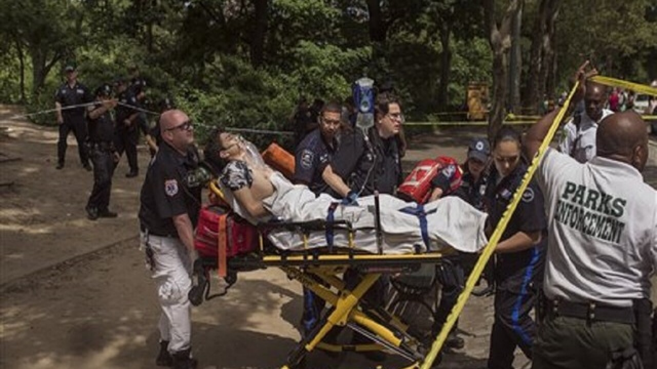 Tests conducted on explosive that hurt man in Central Park