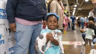 cahs+girl+with+kitten.jpg