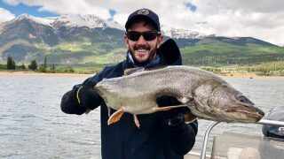 Massive lake trout caught and released by CPW biologist at Twin Lakes
