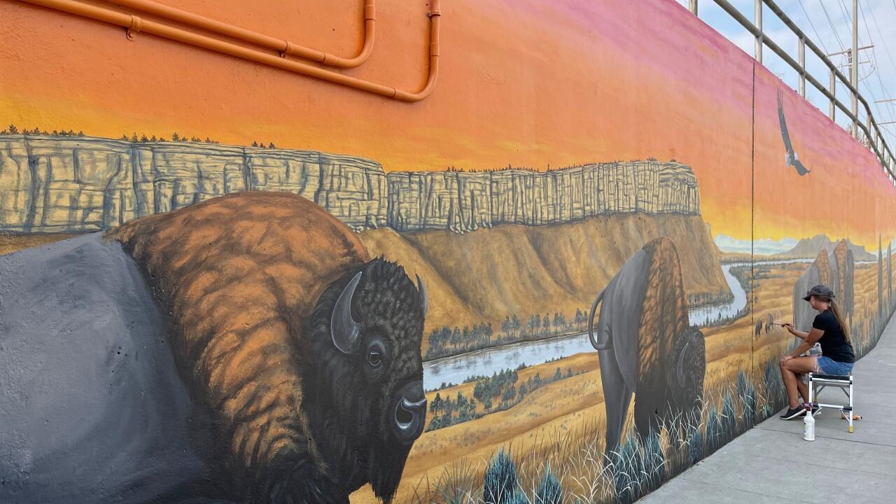 bison.jpg