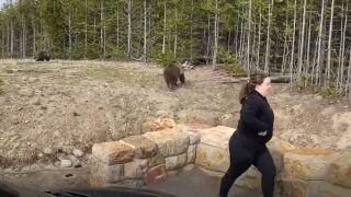 yellowstone park bear woman.JPG