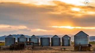 Southwestern Colorado silos
