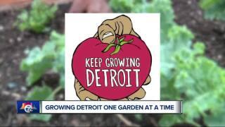 Detroit News Headlines | WXYZ COM