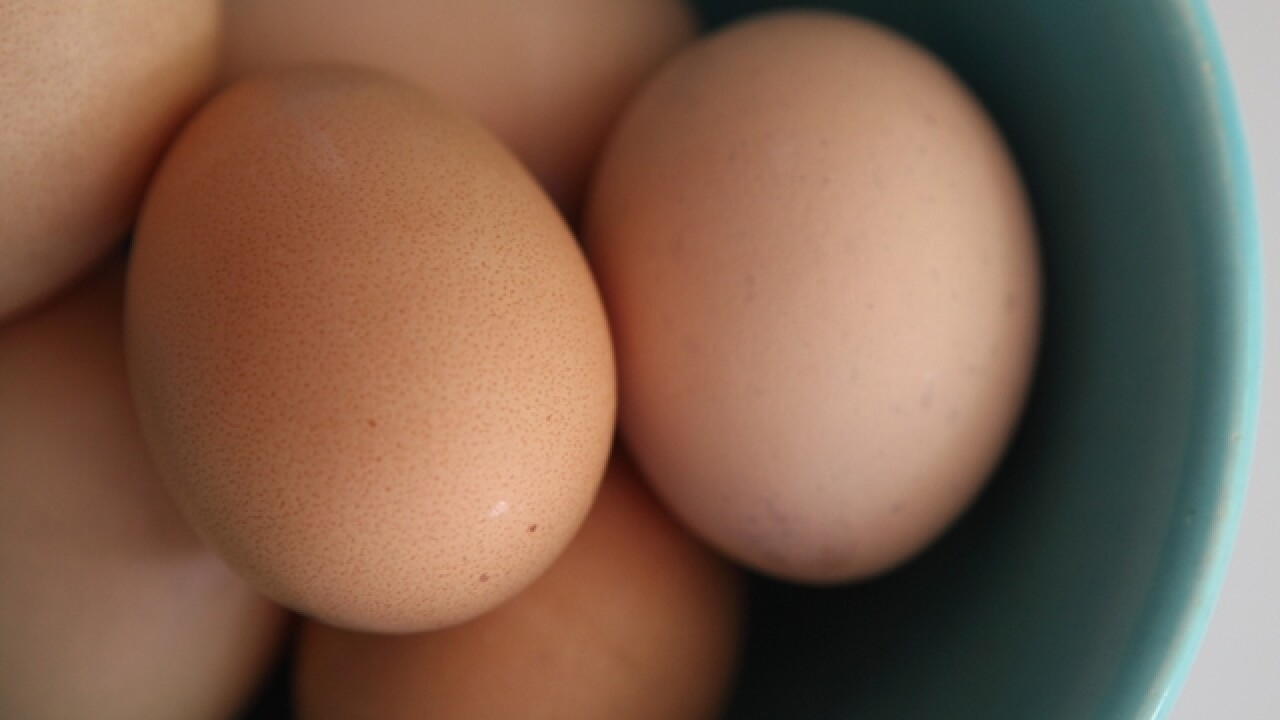 Judge orders farmer to stop using eggshells as fertilizer