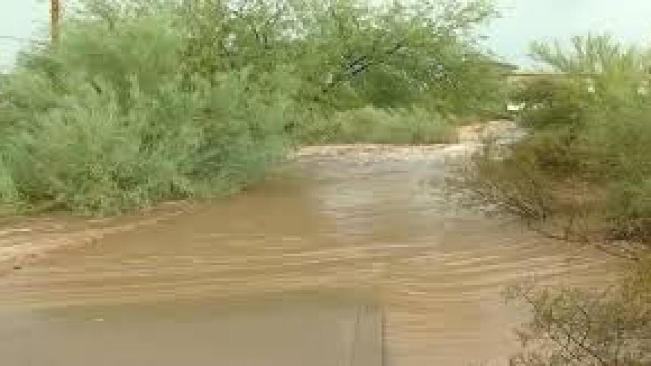 """Portions of the Gila River would be designated as """"wild and scenic"""" under legislation proposed by New Mexico's two U.S. senators."""