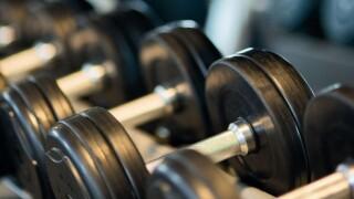 dumbells_weights_gym_equipment.jpg