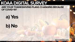 Thanksgiving Survey
