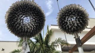 """Dandelion Blooms"" at Downtown Palm Beach Gardens"