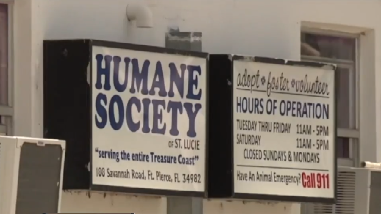 wptv humane society of St. Lucie County.PNG