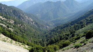 angeles national forest.jpg