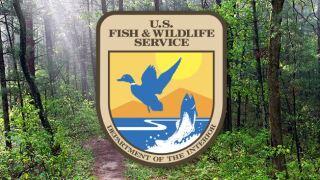 U.S. Fish and Wildlife.JPG