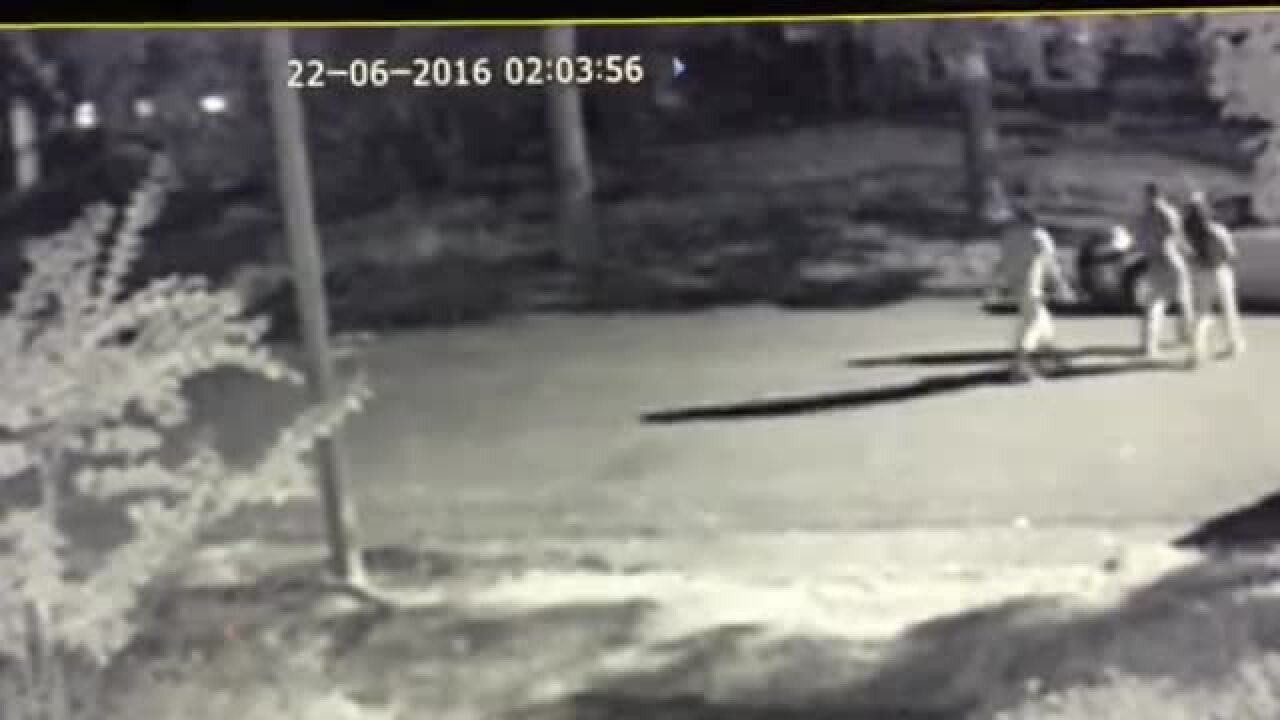 Police release video of suspected Forest Hill spray paint vandals