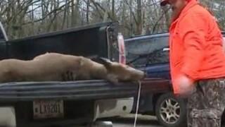 Hunters take fewer deer during gun deer season