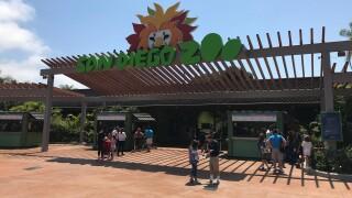 Generic San Diego Zoo