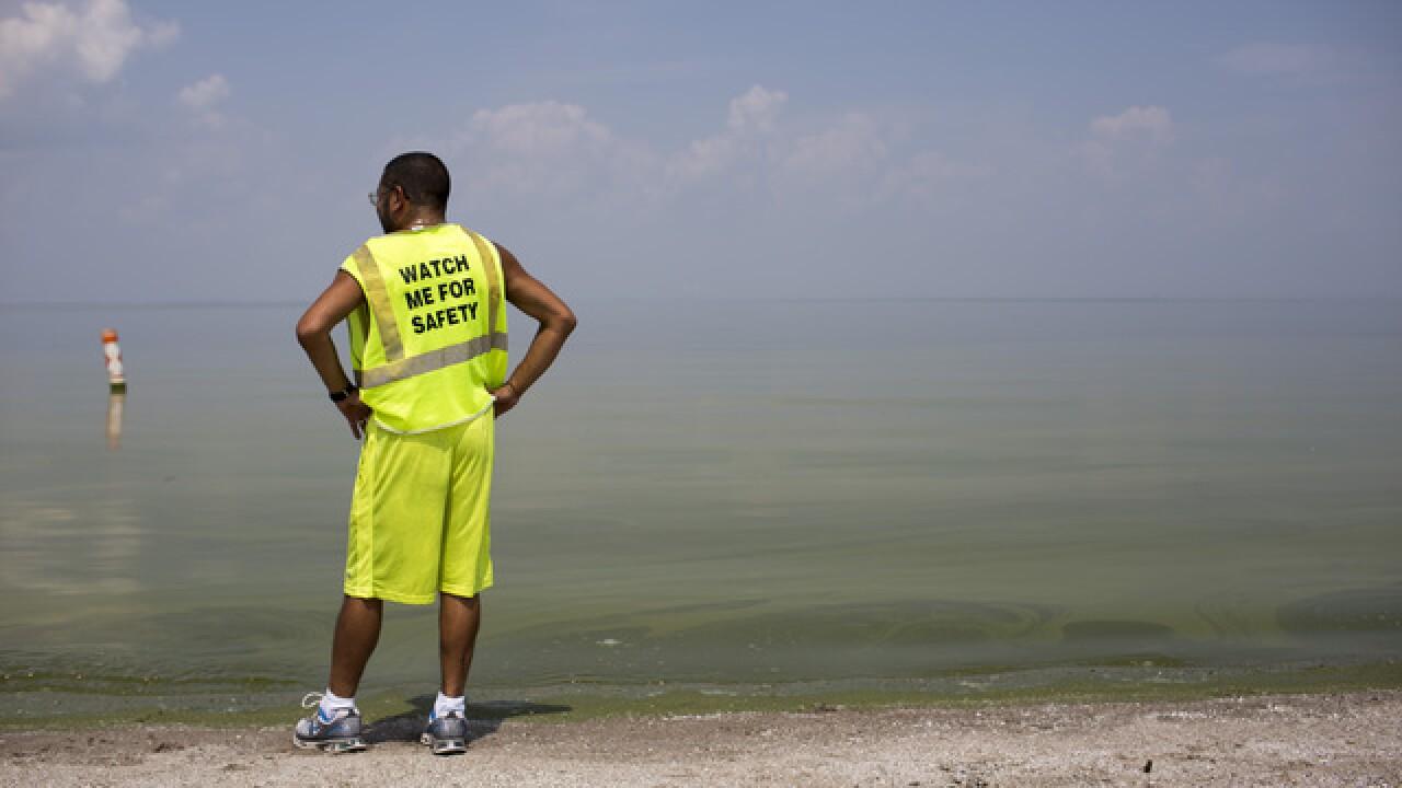 Great Lakes, Lake Michigan drownings up in 2016