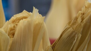 Our Lady of Perpetual Help's 2nd Annual Tamale Sale this weekend