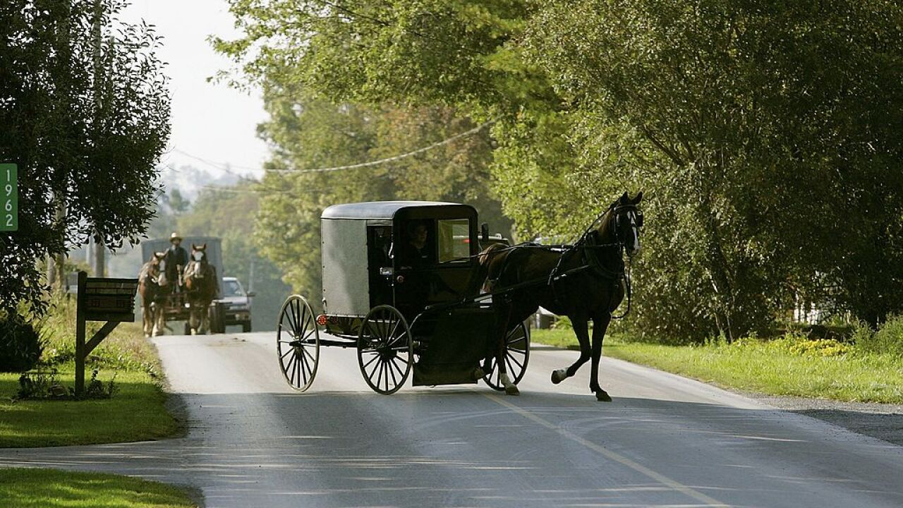 3 children killed after pickup truck hits Amish horse-drawn carriage in Michigan
