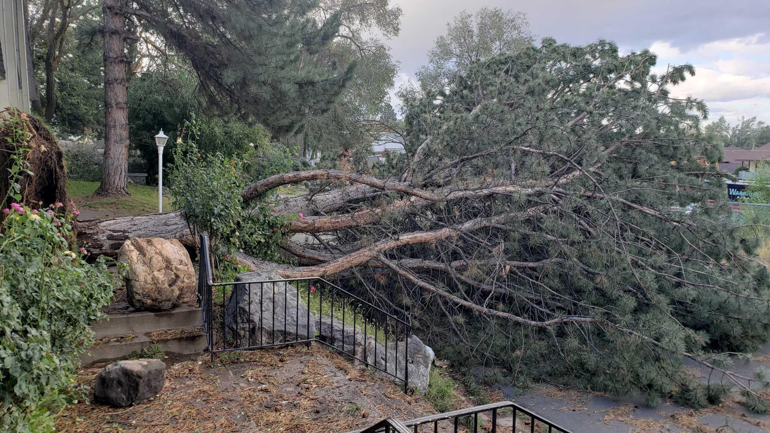 Wind Damage in Ogden (12).jpg