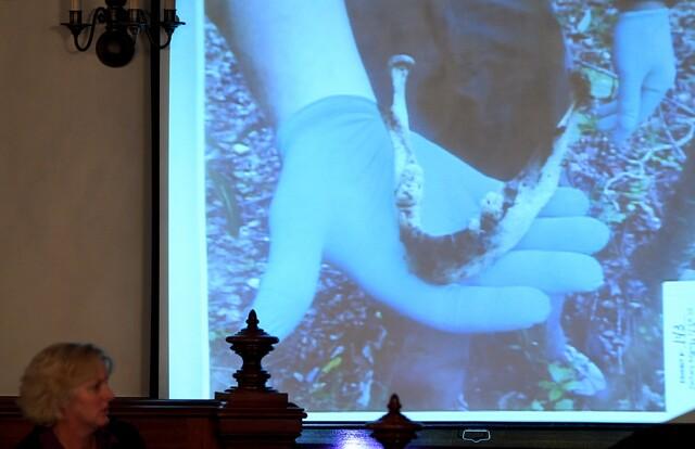 PHOTOS: Day Three Of Holly Bobo Murder Trial