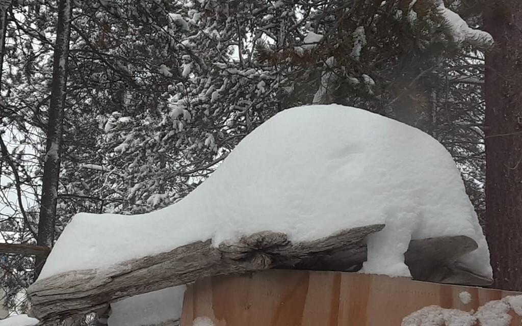 Snow Oct 24 Marion.jpg