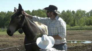 Heroes and Horses plans virtual marathon to benefit veterans