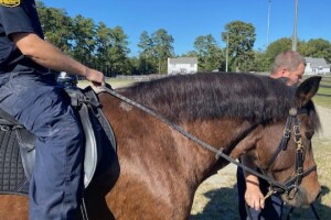 Virginia Beach Mounted Police equine therapy