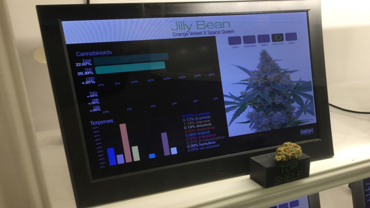 Inside a marijuana dispensary in Colorado