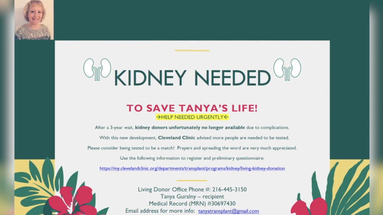 kidneydonor.png