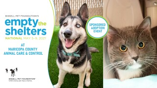 2021-ETS-May-National-Cover-Photo_West_cat_dog.jpg