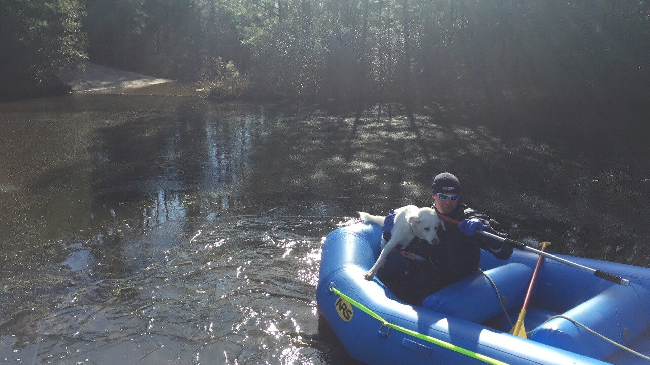 Dog rescued from icy adventure on Short Pumplake