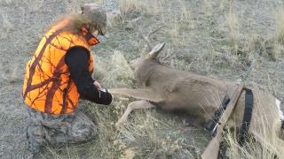 After hunting season