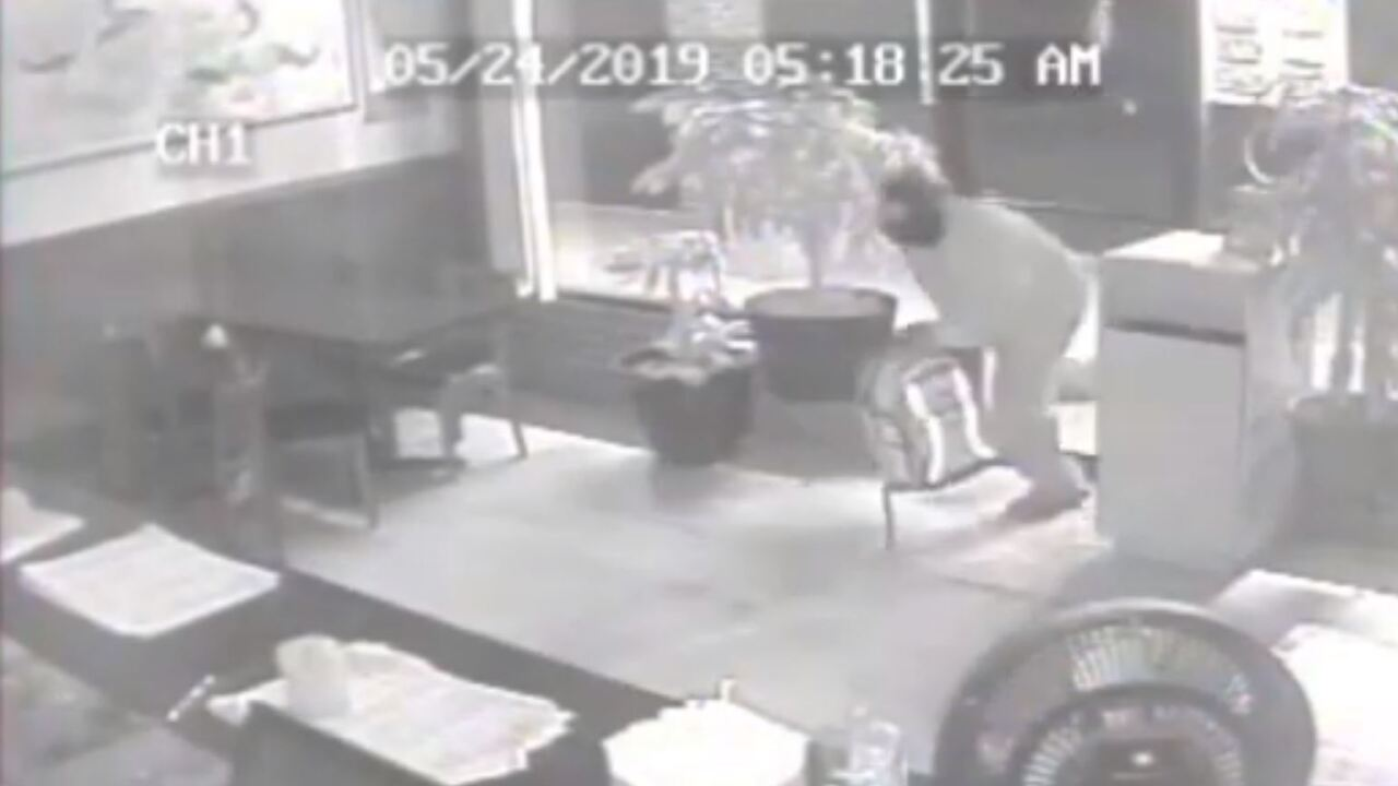 Surveillance video shows burglary suspect smashing in window of Norfolk Chineserestaurant