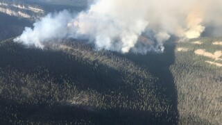 The Snow Creek fire is burning 19 miles northeast of Condon. (USFS photo)