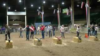 National Western Stock Show offered free admission to help local furloughed workers