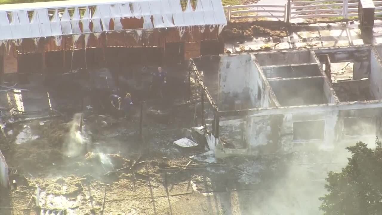 Palm Beach County Fire Rescue said at least three horses were killed after a large barn caught fire March 14, 2019 in Wellington.