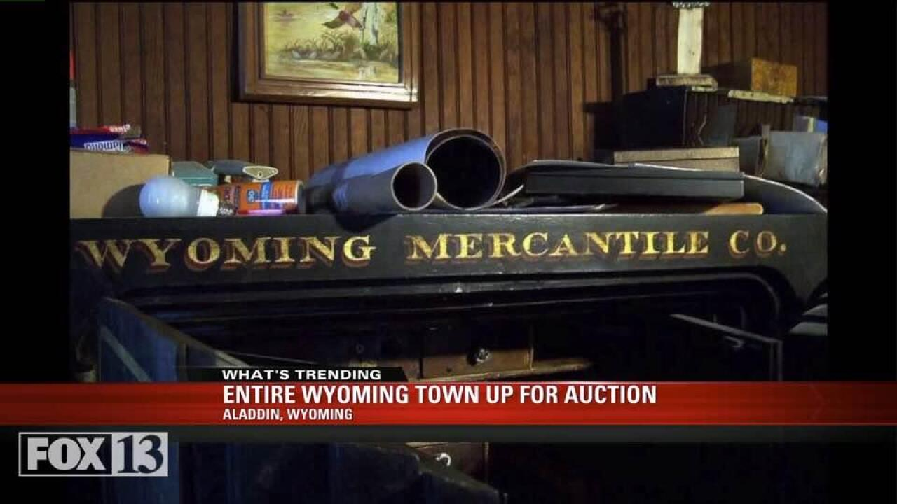 Entire town in Wyoming up forauction