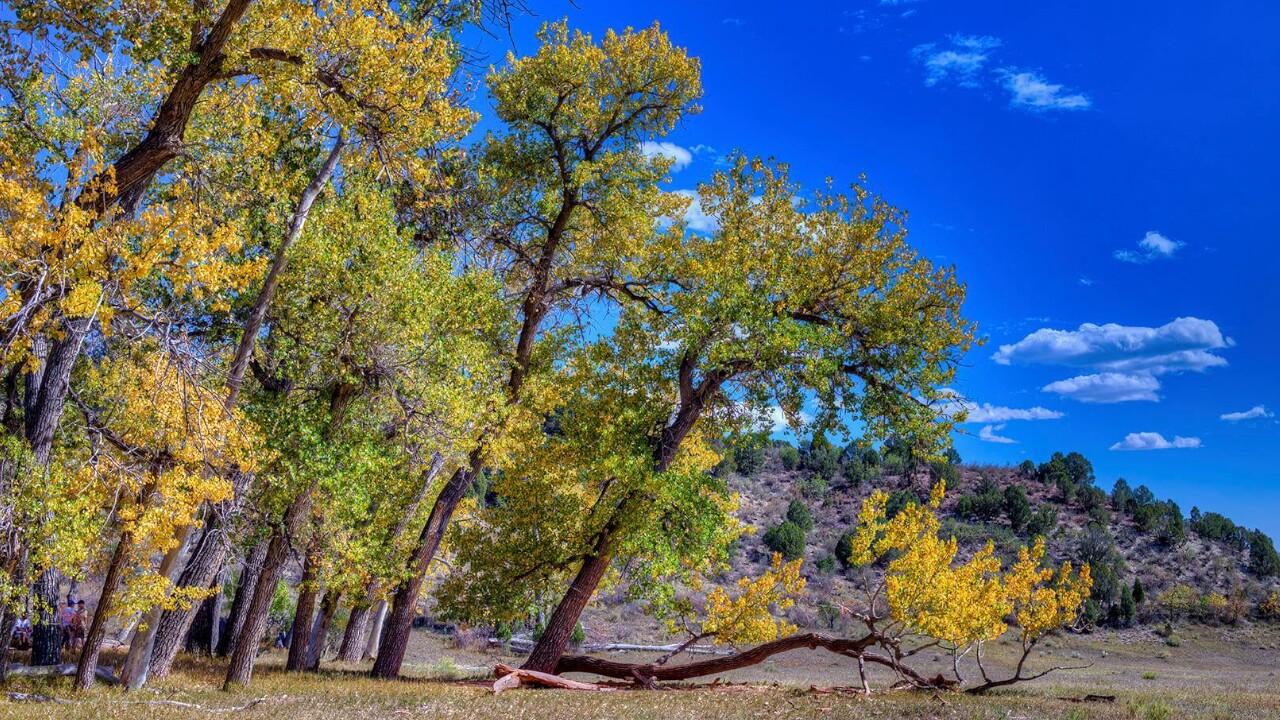Garden of the Gods Rock Ledge Ranch Larry Marr 1.jpg