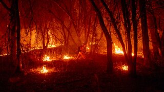An inmate firefighter from the Trinity River Conservation Camp uses a drip torch to slow the Fawn Fire