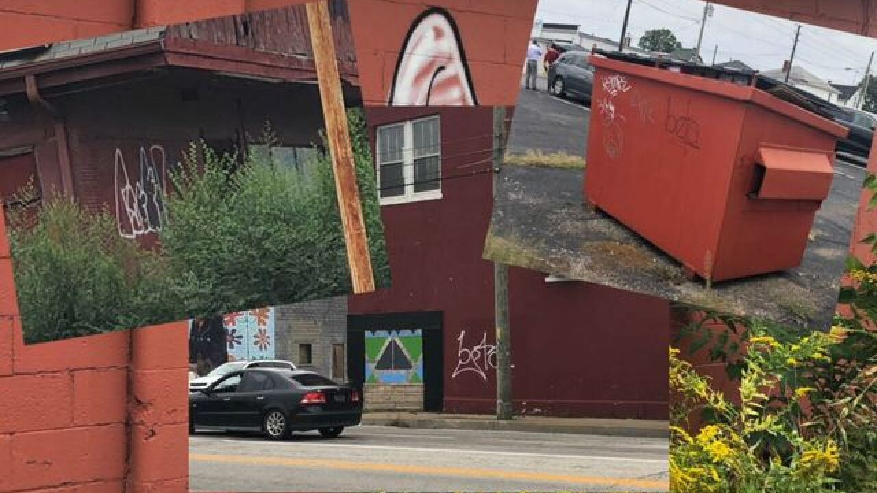 Murals painted on local stores to deter graffiti